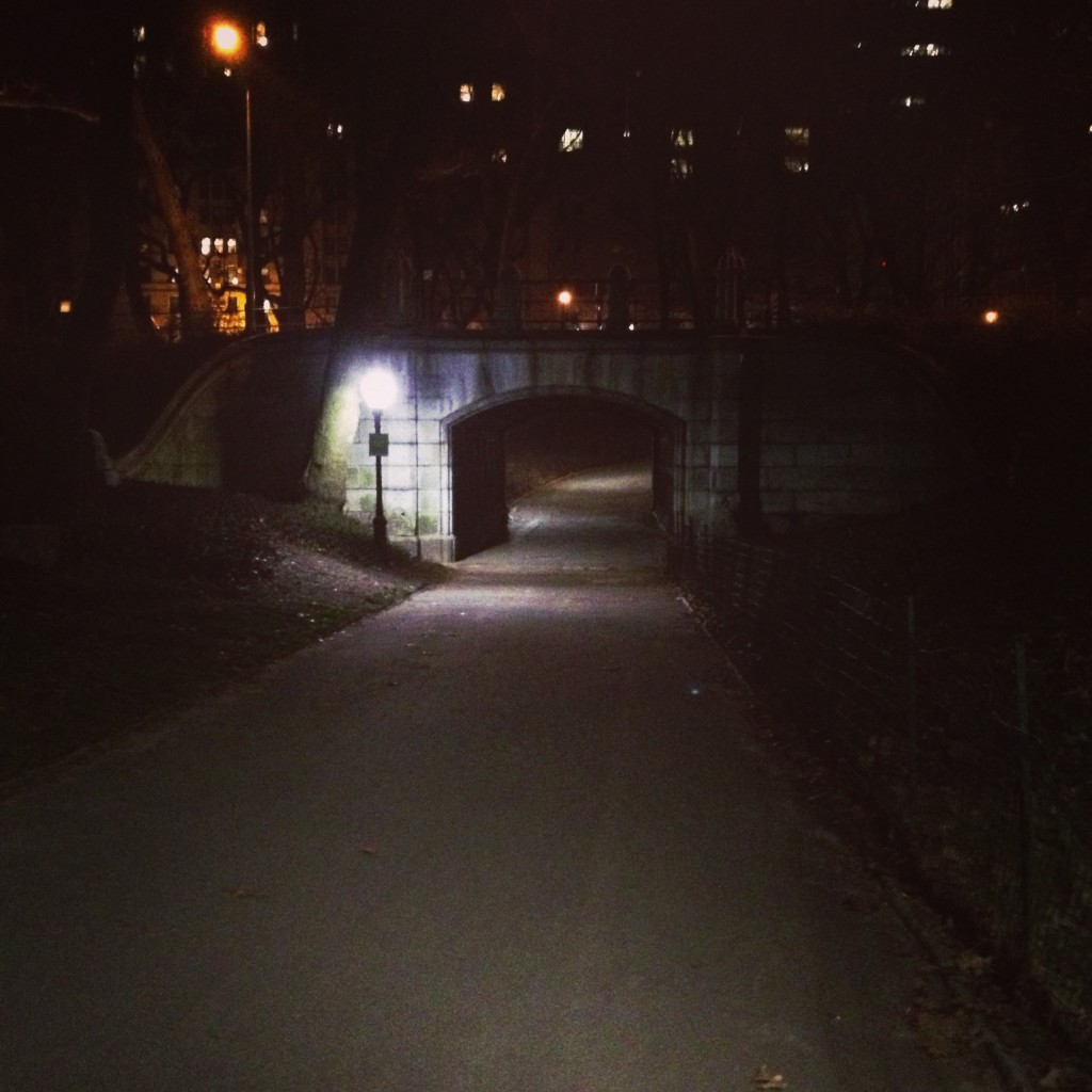 Central Park - Home Alone Scene