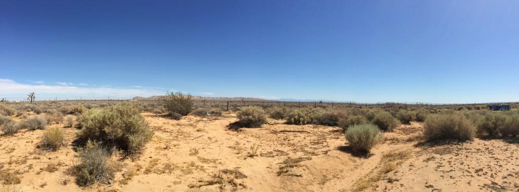 desertlife